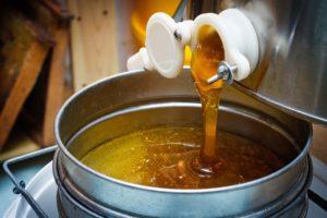 Honigmarkt mit Prämierung in Salzkotten